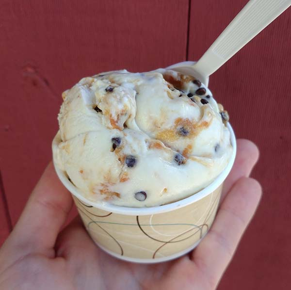 Ferris Acres - Cow Tracks - Vanilla & Peanut Butter Cup Ice Cream