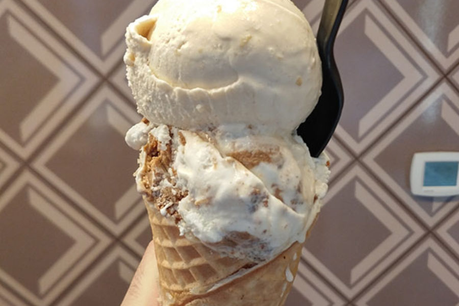 Salt & Straw – Gingersnap Cookie Dough & Coffee Cashew Praline